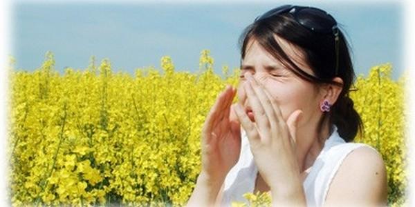 Best Allergy Relief