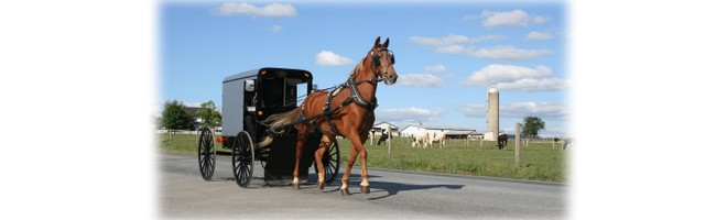 Best Amish Furniture