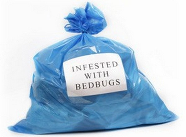 Best Bed Bug Products