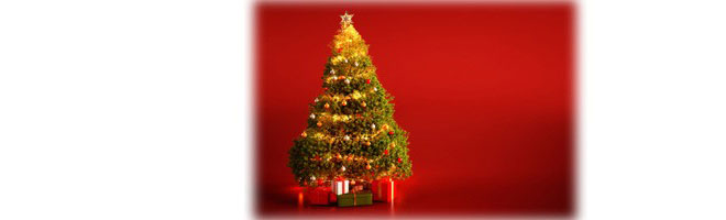 Best Christmas Tree Stores