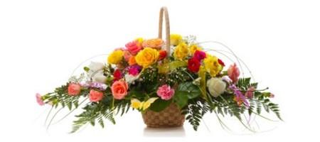 Flower Clubs