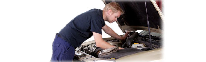 Best Vehicle Inspections